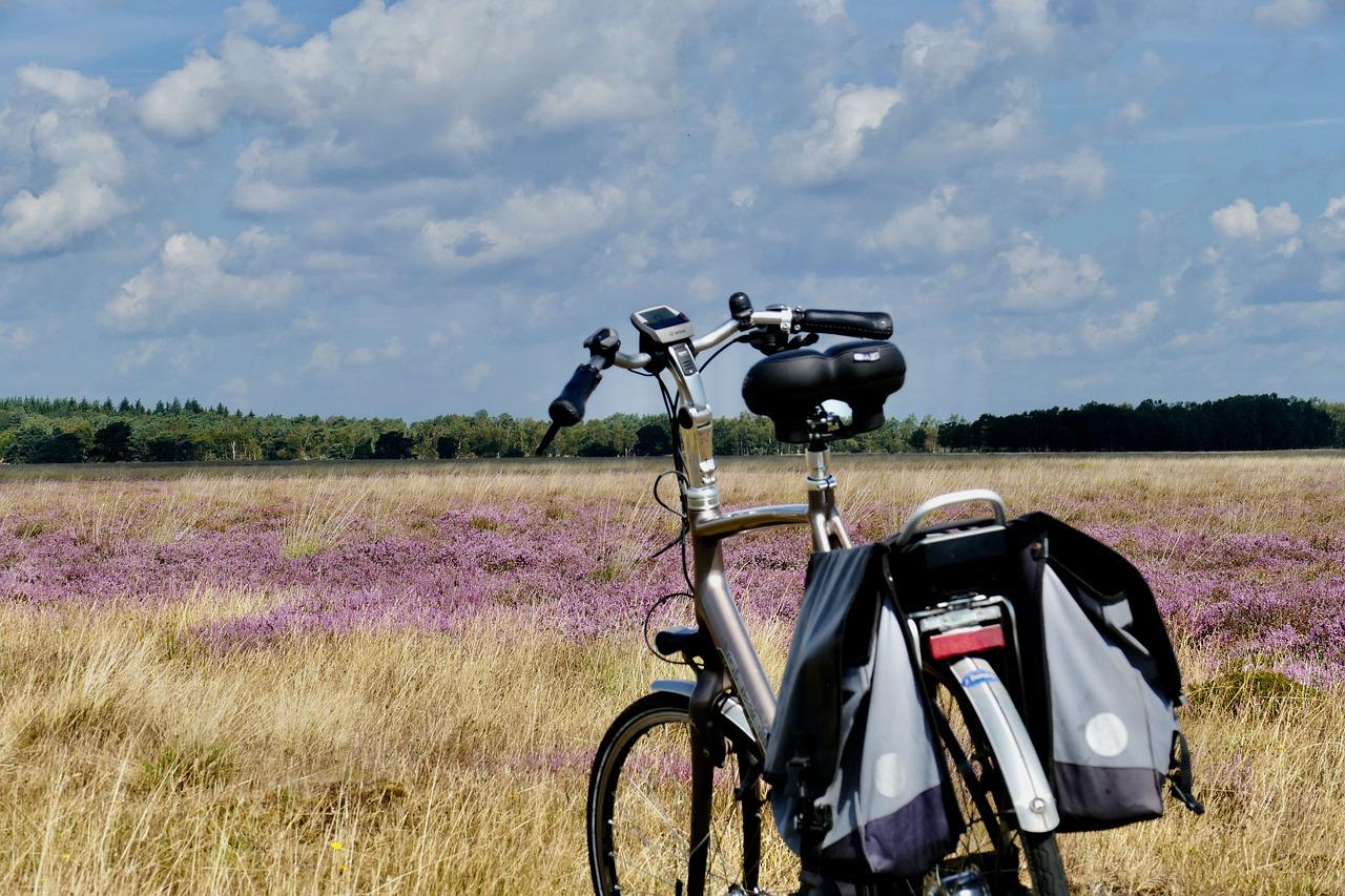 kolo v krajině