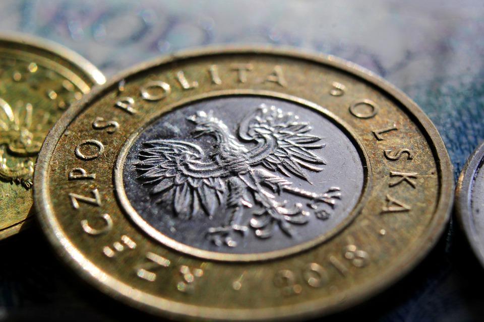 polská mince